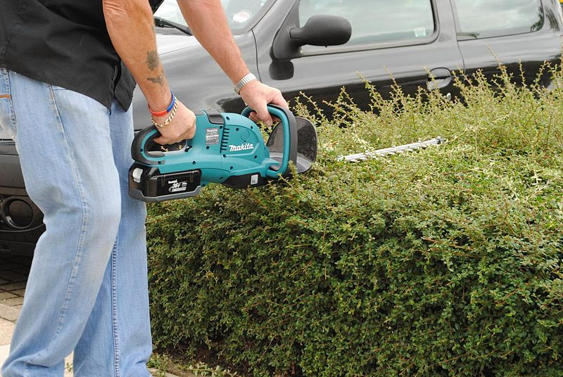 Where to Buy Hedge Trimmer in the UK