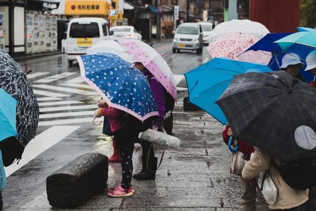 7 Best Stores to Buy Kids Umbrellas in the UK
